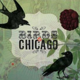 BirdsOfChicagocdcover rm